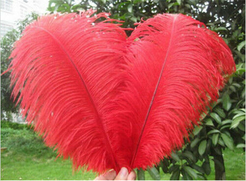 6-24inch Wholesale 10-200pcs high quality natural ostrich feathers 15-60cm