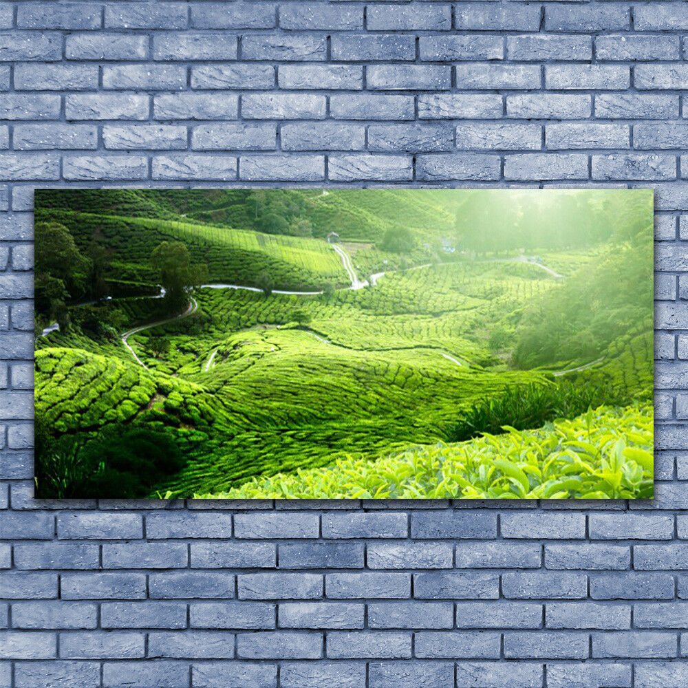 Wall art Print on Plexiglas® Acrylic 140x70 Meadow Nature