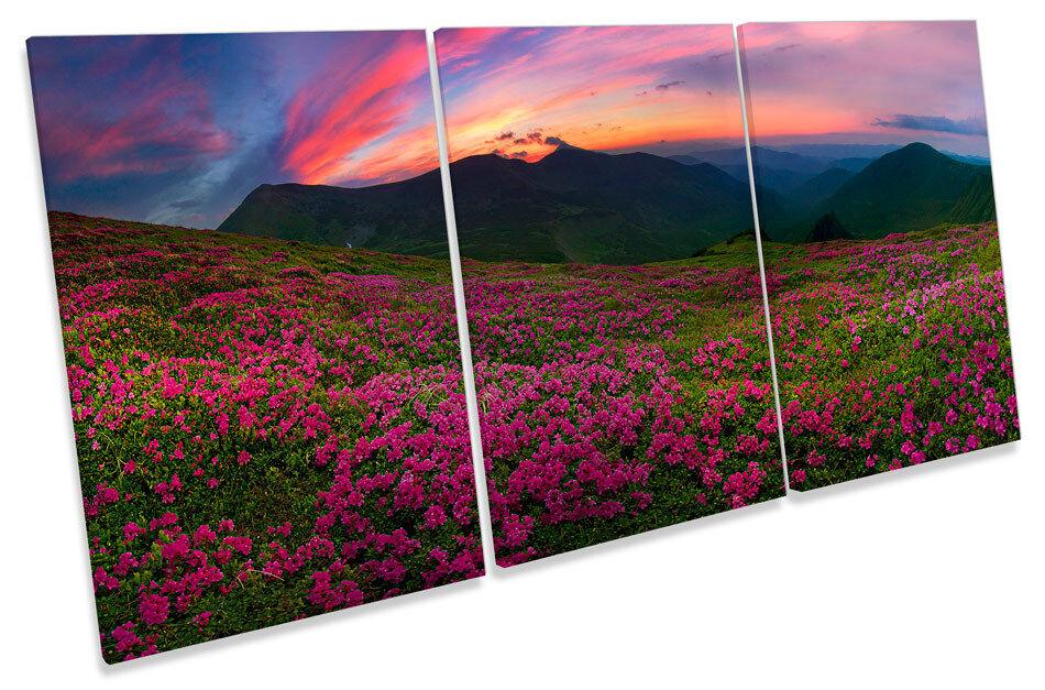 Tatra Mountains Sunset Landscape TREBLE CANVAS WALL ART Picture Print