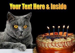 Image Is Loading PERSONALISED BRITISH BLUE GREY CAT KITTEN BIRTHDAY CARD