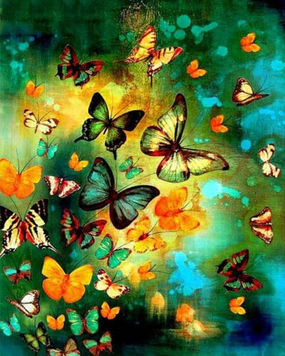 Colorful Butterflies 40 x 50 cm Painting By Numbers Kit On Canvas N9