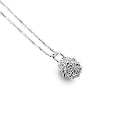 Limpet Shell Pendant Sterling Silver 925 Hallmarked All Chain Lengths