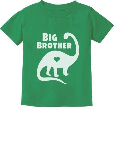 Big Brother Gift for Dinosaur Loving Boys Toddler//Infant Kids T-Shirt Siblings