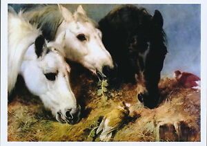 Herring Farm Animals Horse Print White Chestnut Horses Manger The Frugal Meal