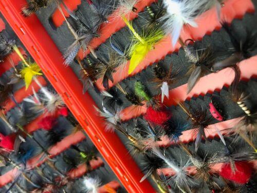 Angel Fliegen Geliefert in Box Auswahl Art und Anzahl der 25-100