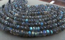"6"" strand SPECTROLITE LABRADORITE faceted rondelle gem stone beads 8mm"