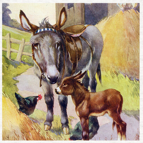 Vintage Image Fabric Cushion Upholstery Craft Quilting Panel Donkey /& Foal