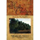 The Salt Cedars (stories for My Daughter) 9780595534166 Paperback