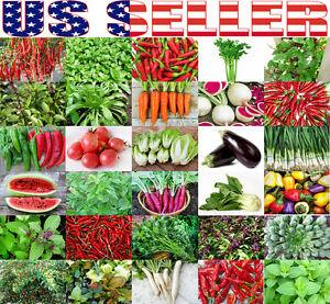 ORGANICALLY-GROWN-Asian-Vegetable-Herb-Pepper-Heirloom-NON-GMO-Daikon-Basil-USA