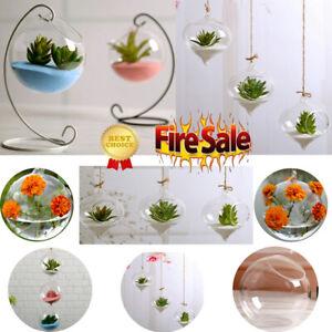 New-Home-Garden-Clear-Glass-Flower-Hanging-Vase-Planter-Terrarium-Container-US