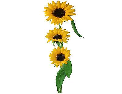 Gewissenhaft Sonnenblumen 130 Klein Oder 48 Groß Klebend Weißes Papier Aufkleber Etiketten