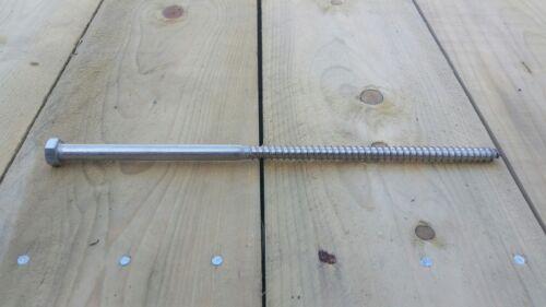 "3//8/"" x 10/"" Stainless Steel Hex Lag Screws-12 pcs"