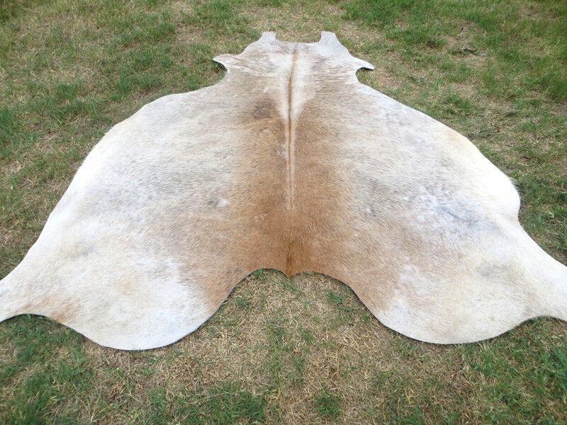 BEIGE LARGE     braun Cowhide Rug natural Cowhides Cow Hide Skin 6X6 FEET. E-B a02975