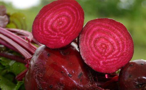 Organic Garden Vegetable Seeds NON GMO Heirloom NON Hybrid Seeds From Canada