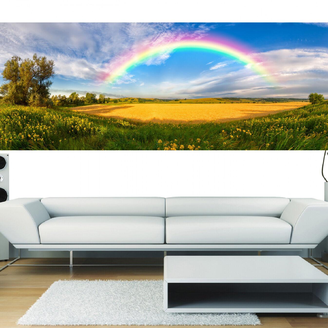 Stickers panoramique déco Arc en Ciel  réf 3673 ( ( ( 13 diHommes sions ) | Prix D'aubaine  000821