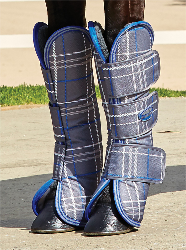 Weatherbeeta Wide Tab Long Horse Travel Stiefel Stiefel Stiefel - Grau Plaid 82d410