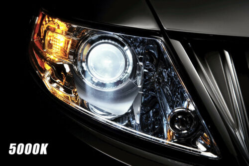 OE Stock Fit Xenon HID Headlight Bulbs For Acura TSX 2004-2014 Low Beam Qty of 2
