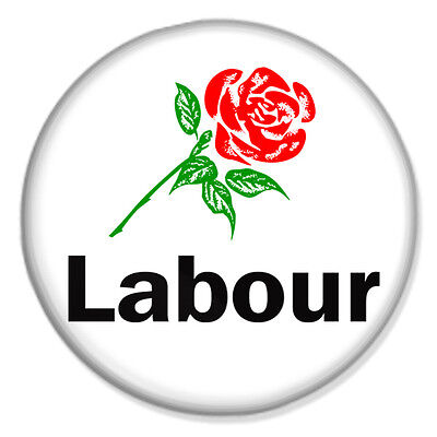 """VOTE LABOUR - ROSE FLAG 25mm 1"""" Pin Badge SUPPORT JEREMY CORBYN ..."""