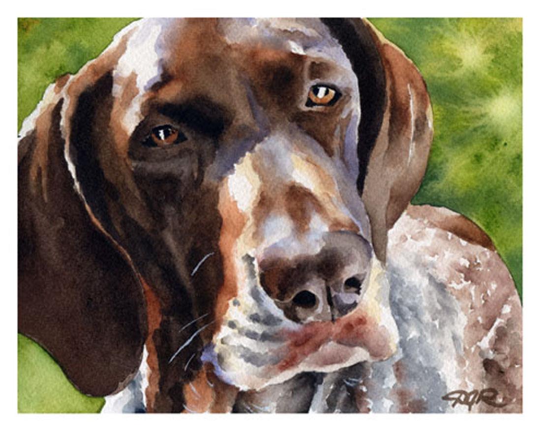GERMAN SHORT HAIrot POINTER  WaterFarbe Dog 11 x 14 ART Print by Artist DJR