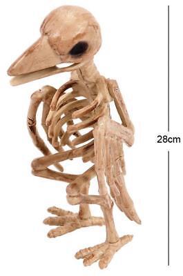 28CM ZOMBIE RAVEN SKELETON Halloween Party Horror Crow Bird Decoration Prop 6323