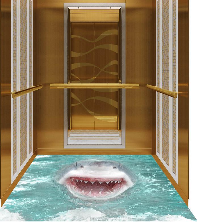 3D Hai Brüllen 63 Fototapeten Wandbild Fototapete Tapete Familie DE Lemon