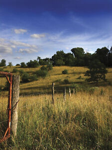 Image is loading Rolling-Ranch-Land-Wallpaper-Wall-Mural-UMB91082