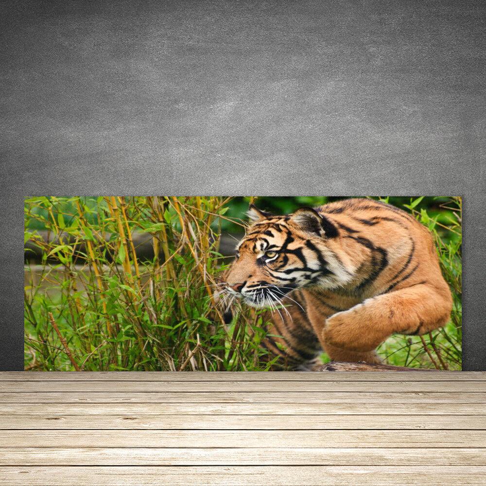 Crédence de cuisine en verre Panneau 125x50 Animaux Tigre