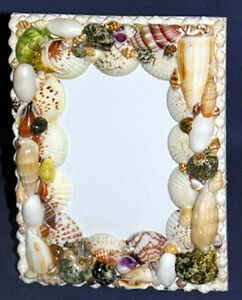 "New Seashell Table-Top Photo/Picture Frame~5""X7""~Plastic Front Panel-Shell Decor"