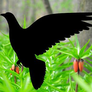 Sticker Pigeon 20cm Decorative Film Bird Glass Window Animal Protection Warning