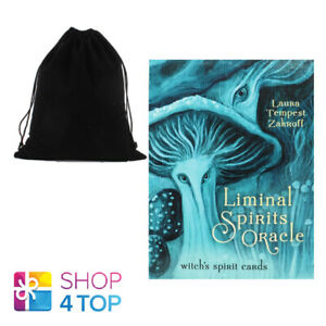 Liminal-Spirits-Oracle-Cards-Deck-Book-Kit-Tempest-Zakroff-Llewellyn-with-Bag
