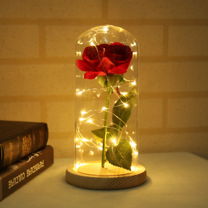 Red Rose In Glass Dome With Led Lights Beauty And The Beast Gift