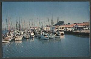 Bodega-Bay-CA-c-1960-Postcard-FISHING-BOATS-CA-Shoreline-Highway-No-1