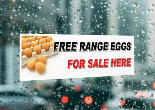 Free Range Eggs For Sale Here Signage Colour Sign Printed Heavy Duty 4239