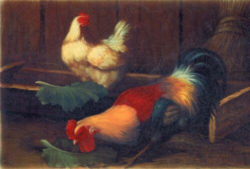 "Rooster Chicken Coop 1 pc 11-1//4/"" X 7-1//4/"" Waterslide Ceramic Decal Xx"