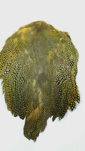 GUINEA-FOWL-SKIN-with-WINGS-amp-TAILS-034-Sunburst-Yellow-034-very-good-quality