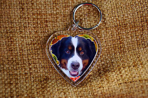 Bernese-Mountain-Dog-Keyring-Key-Ring-Free-UK-Post-Birthday-Gift-Stocking-Filler