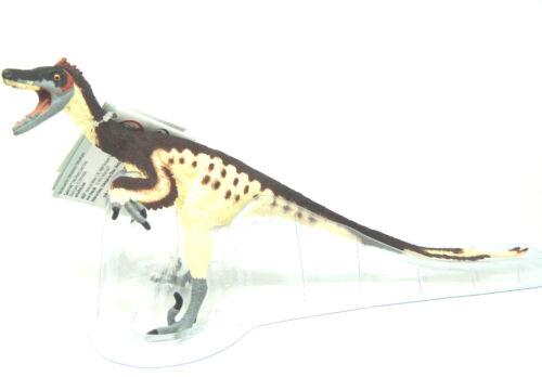Safari Velociraptor Dinosaur Carnegie Collection Top Animal Figure o15