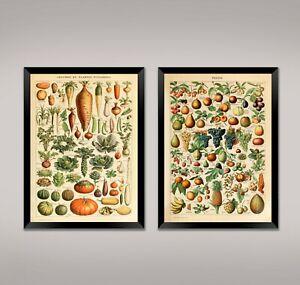 FRUIT-AND-VEGETABLE-PRINTS-Vintage-Food-Posters