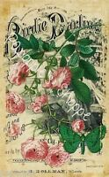 Fabric Block Vintage Pink Flowers Sheet Music Chic Shabby