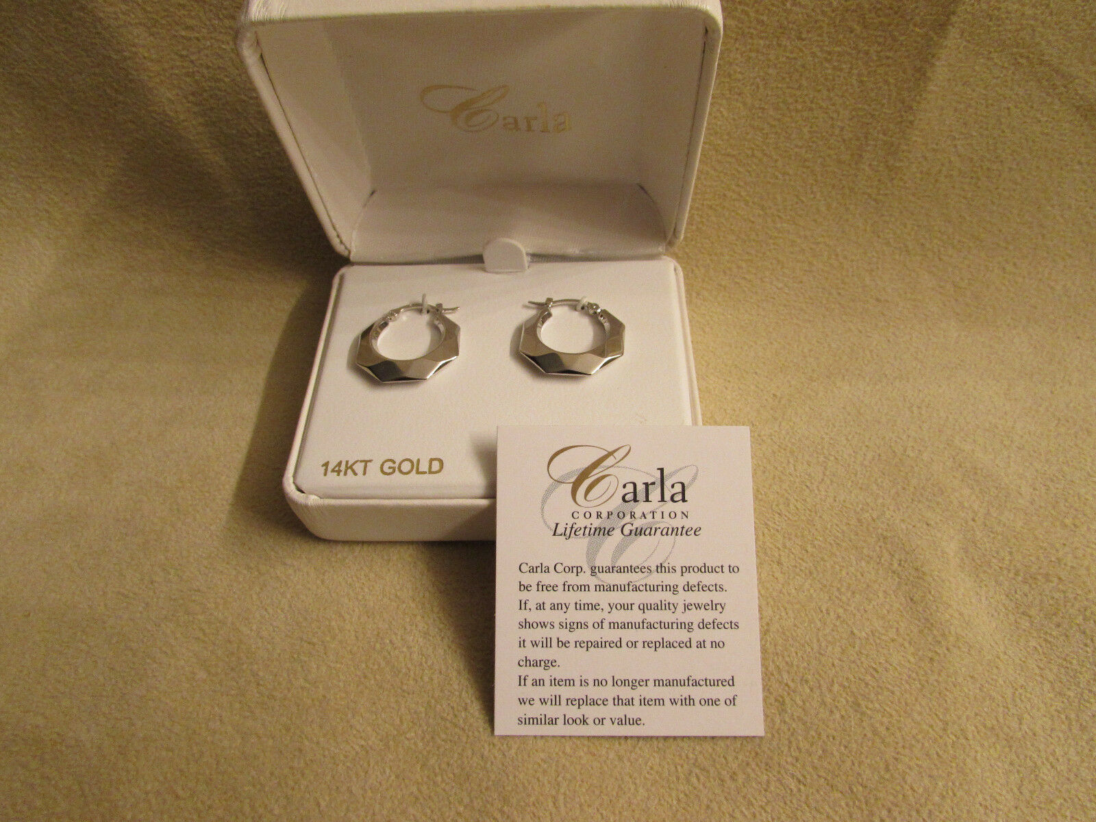 Brand New Carla 14kt White gold Fancy Hoop Earrings 04 203W
