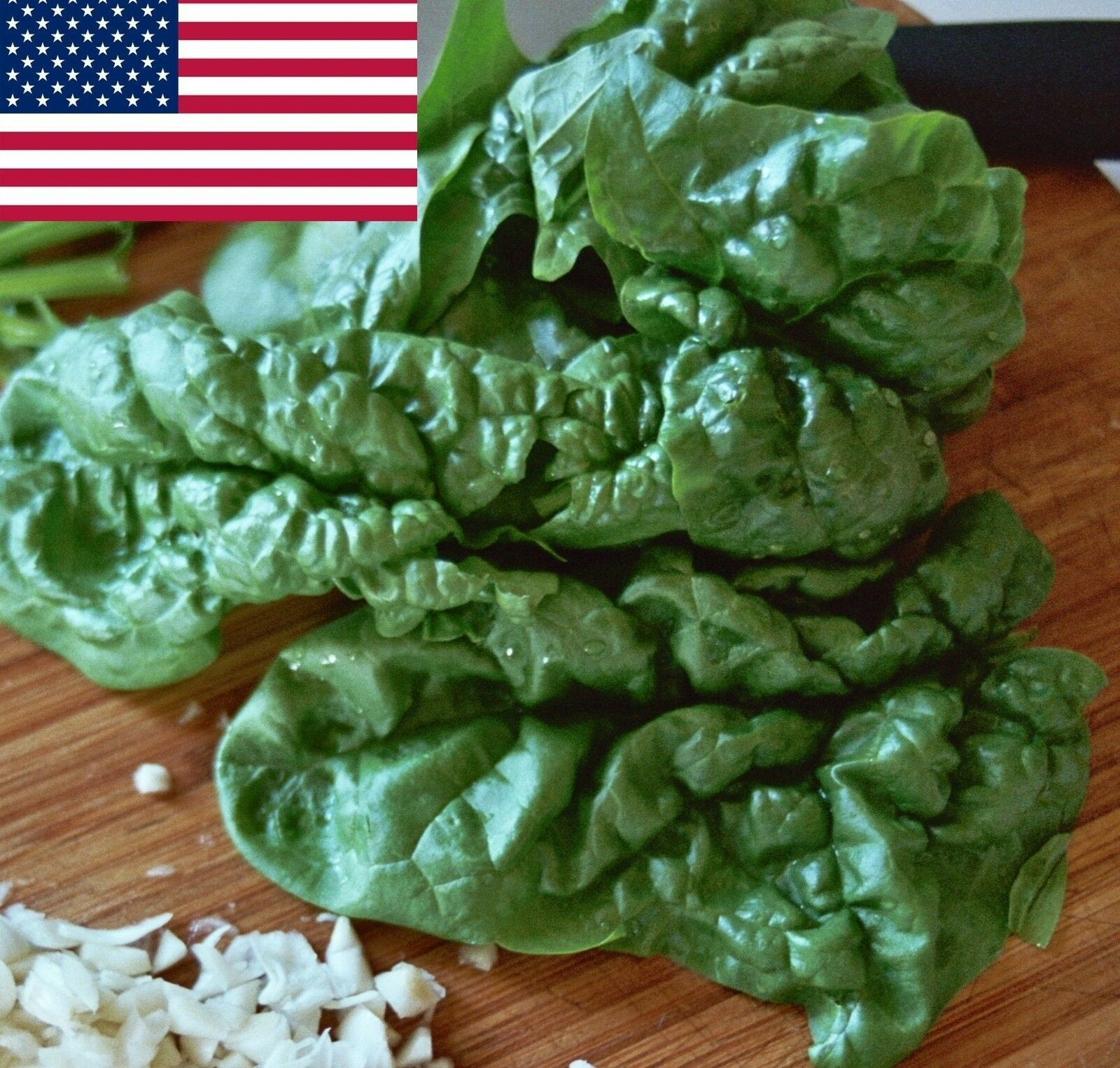 Spinach Seeds- Organic Bloomsdale Savoy- 200+ 2021 Seeds Ship/order