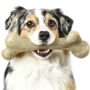 Pet-Qwerks-Extreme-Dinosaur-BarkBone-Dog-Chew-Toy-Bacon-Flavor-XLarge-DBB3