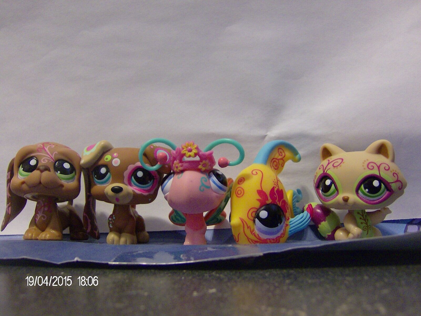 Littlest Pet Shop Postcard Pets Dogs Butterfly Butterfly Butterfly Angel Fish and Raccoon New 1d37a3