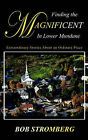 Finding the Magnificent in Lower Mundane by Bob Stromberg (Paperback / softback, 2004)