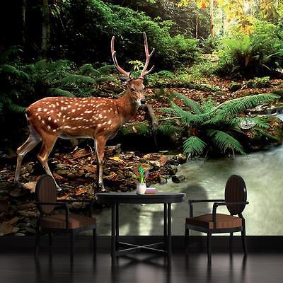 Fototapeten Fototapete Tapete Nebel Hirsch Wald Tier Natur Baum Foto 3FX10033P4A