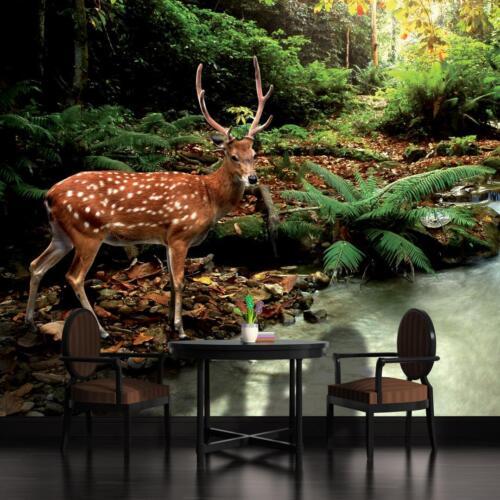 Papier peint papiers peints photos papier peint papier peint photo image la fresque forêt Cerf 3fx147p8
