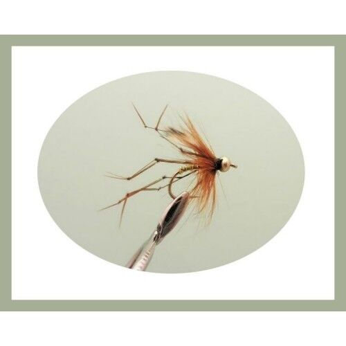 8 Pack Gold Head Standard Daddy Size 10//12 Daddy Long Legs Trout fishing flies