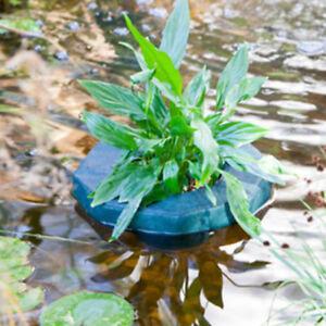 Cesto per piante laghetto galleggiante cm25 ebay for Piante ossigenanti per laghetto