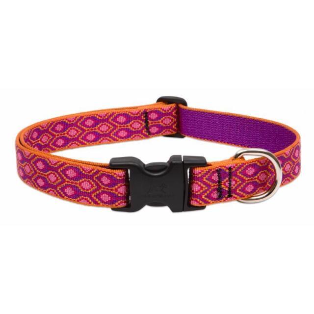 Lupine Dog Collar 1 inch - Original