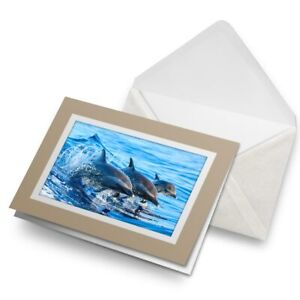 Greetings-Card-Biege-Swimming-Dolphins-Ocean-Sea-Creature-8434